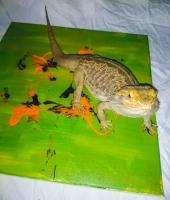 Animal Art Safari Artists Gallery Image 194