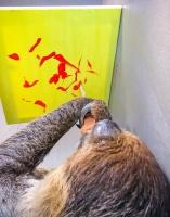 Animal Art Safari Artists Gallery Image 199