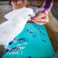 Animal Art Safari Artists Gallery Image 216