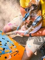 Animal Art Safari Artists Gallery Image 239
