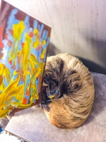 Animal Art Safari Artists Gallery Image 247