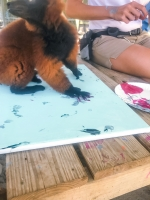 Animal Art Safari Artists Gallery Image 251