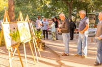 Animal Art Safari 2018 Gallery Image 456