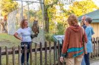 Animal Art Safari 2018 Gallery Image 461